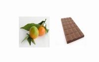 Oranges amères au chocolat 350 g  Pot de 350 g